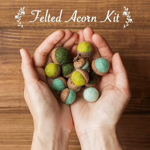 Felted Acorn Kit